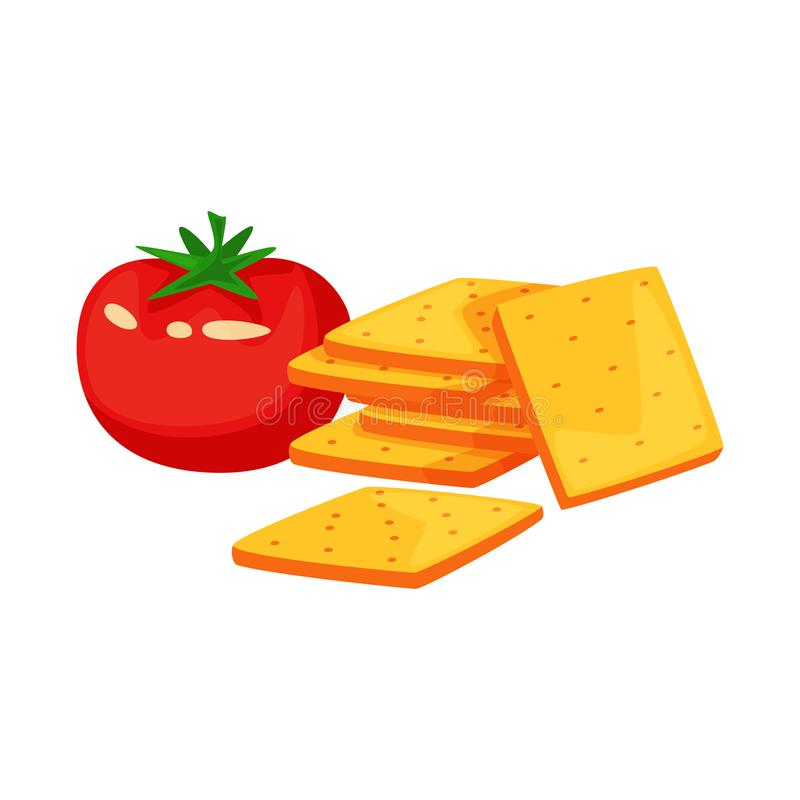 Geïsoleerd voorwerp van cracker en tomatenpictogram Reeks van cracker en landbouw vectorpictogram voor voorraad vector illustratie