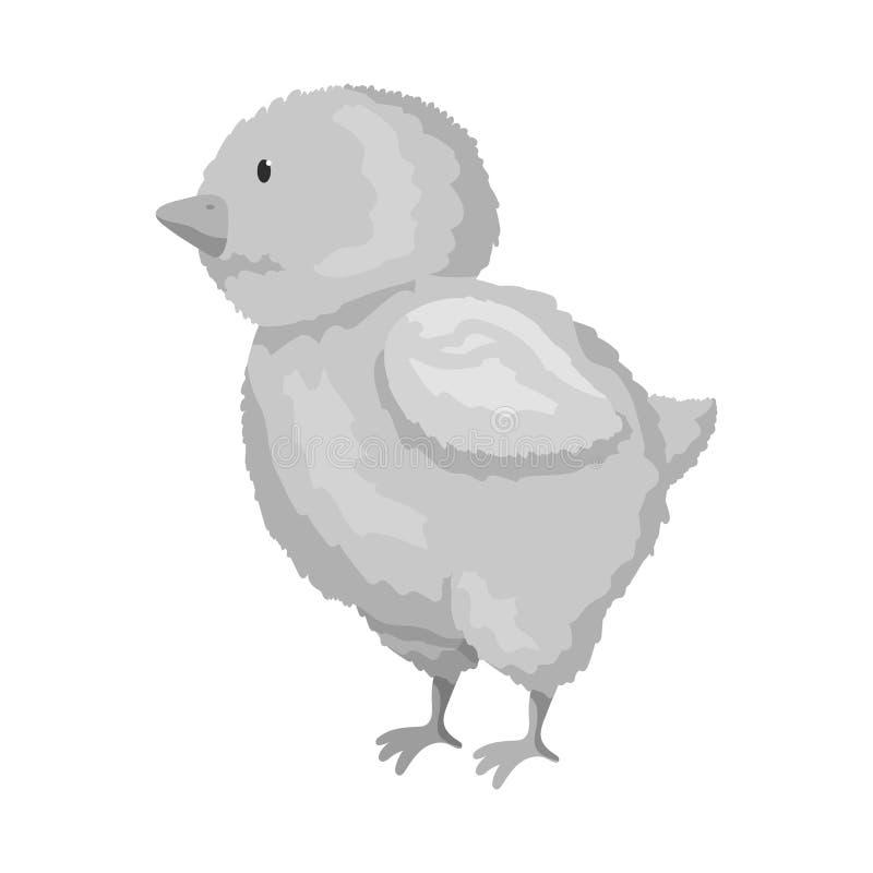 Geïsoleerd voorwerp van kuiken en Pasen-embleem Inzameling van kuiken en leuke voorraad vectorillustratie vector illustratie