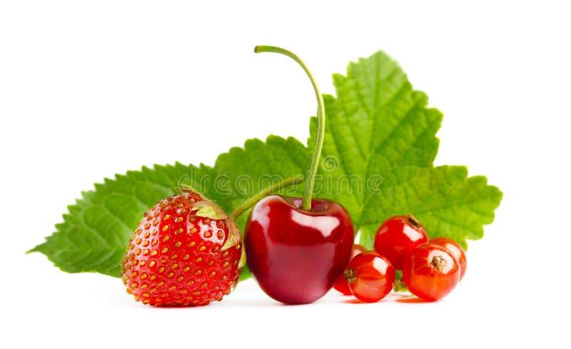 Geïsoleerde aardbeien, kersen en bessen stock fotografie