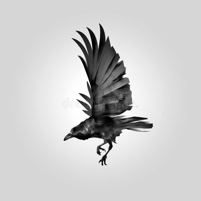 Geïsoleerde beeld vliegende kraai stock illustratie