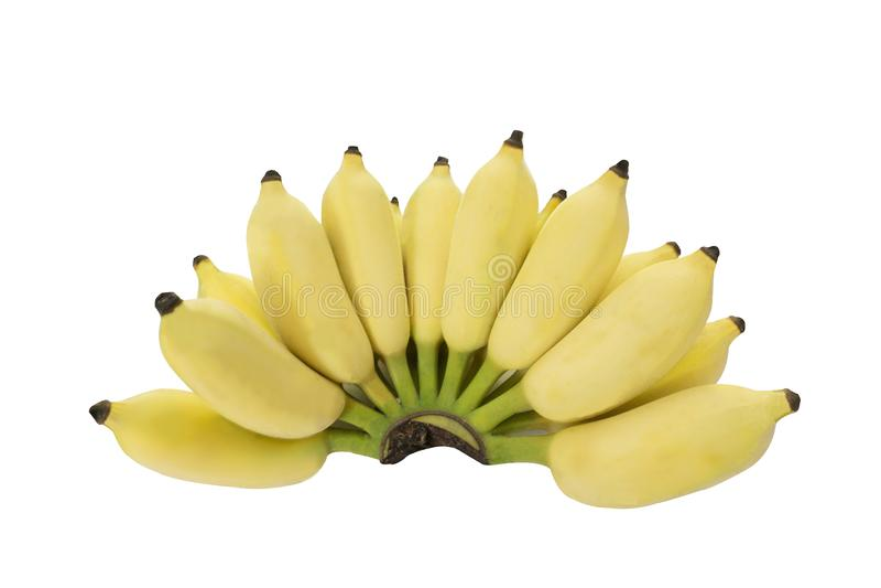 Geïsoleerde bos van Gecultiveerde banaan op witte achtergrond, met het knippen van weg stock afbeeldingen