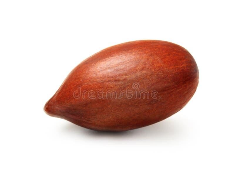 Geïsoleerde cacaopeul stock afbeelding