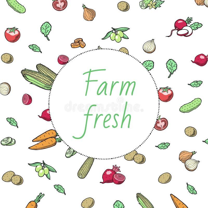 Geïsoleerde cirkel van groentenpictogrammen de rond op wit Vectorillustratie van verse organische plantaardige banner voor tijdsc royalty-vrije illustratie