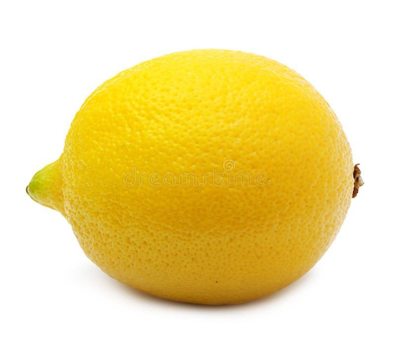 Geïsoleerde citroen. stock afbeeldingen