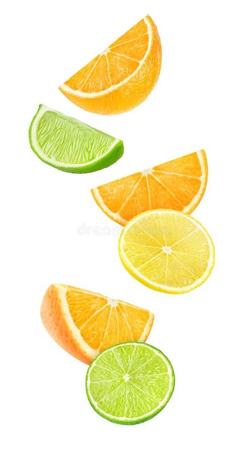 Geïsoleerde citrusvruchtenplakken royalty-vrije stock foto's
