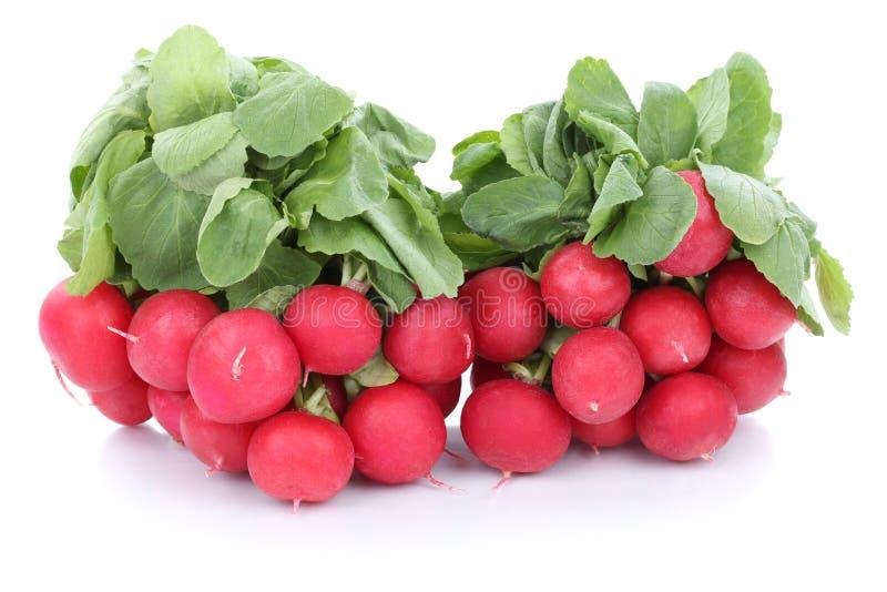 Geïsoleerde de groente van rode radijsradijzen stock afbeelding