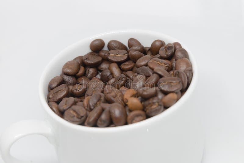 Geïsoleerde de kop van koffiebonen royalty-vrije stock afbeelding