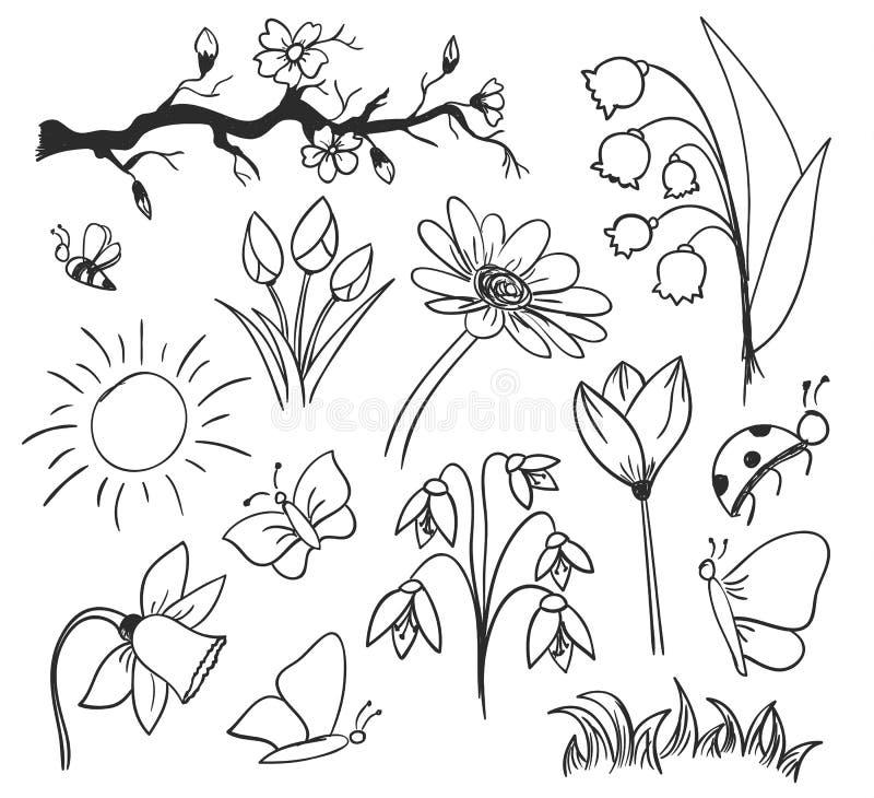 Geïsoleerde de tekeningsbloemen van de de lenteinkt royalty-vrije illustratie