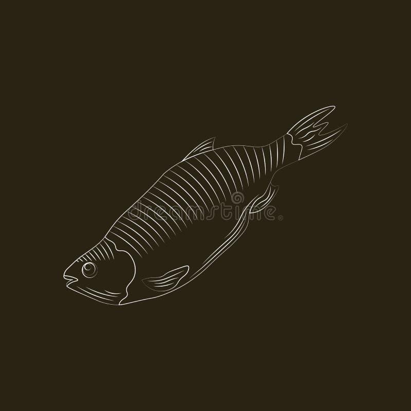 Geïsoleerde de vector van het vissenpictogram Stylization die met de hand trekken royalty-vrije illustratie
