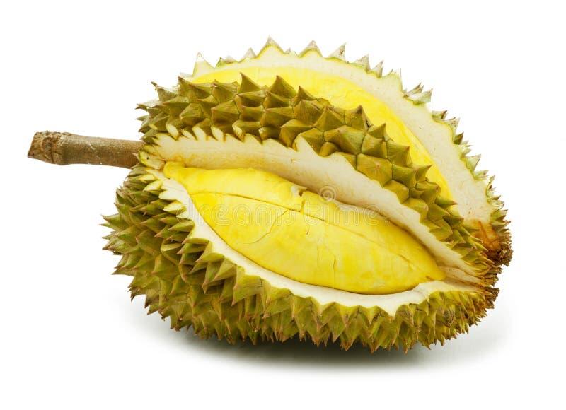 Geïsoleerde Durian royalty-vrije stock afbeeldingen