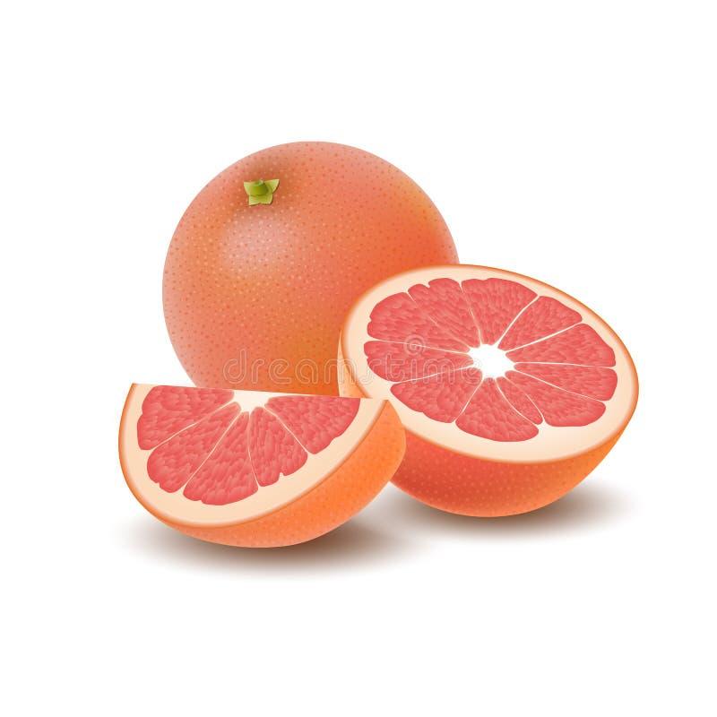 Geïsoleerde gekleurde groep grapefruits, plak, de helft en geheel sappig fruit met schaduw op witte achtergrond Realistische citr vector illustratie