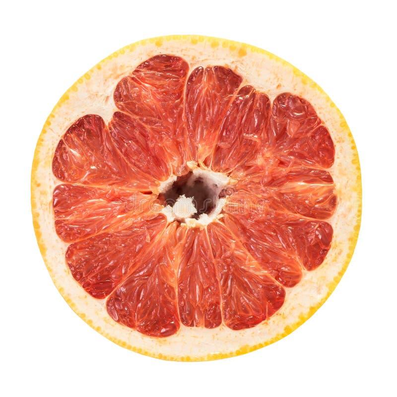 Geïsoleerde grapefruitrobijn stock foto