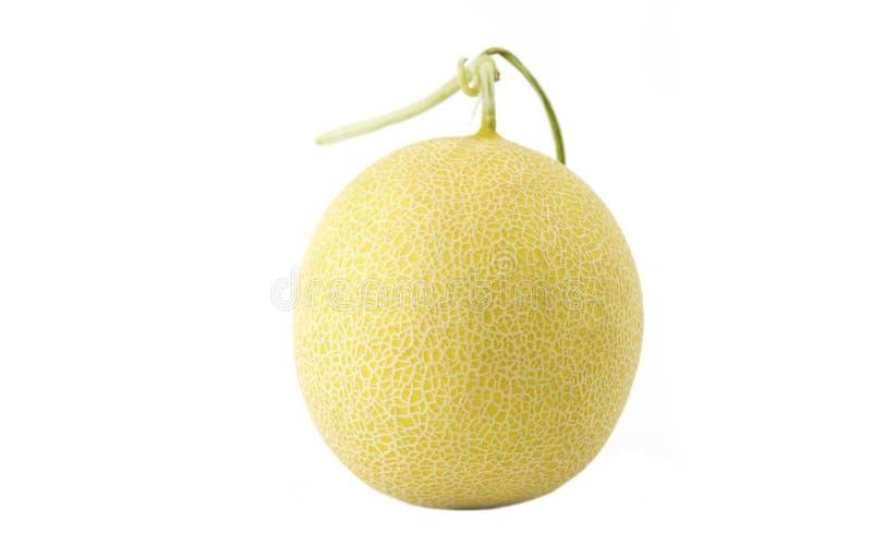 Geïsoleerde het fruit van de Galiameloen stock foto