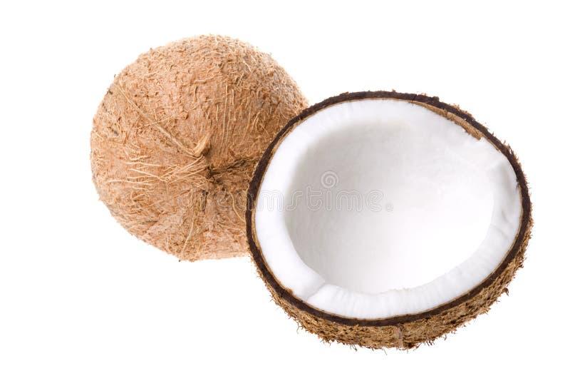 Geïsoleerde kokosnoten stock fotografie