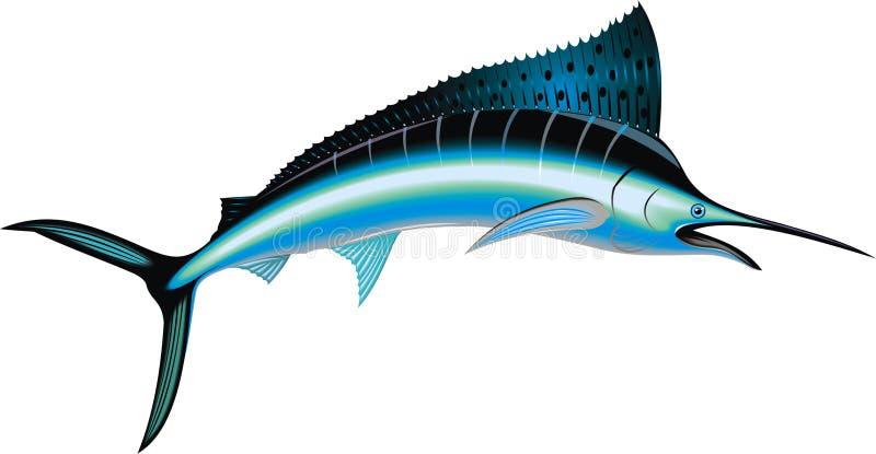 Geïsoleerde marlijnvissen vector illustratie