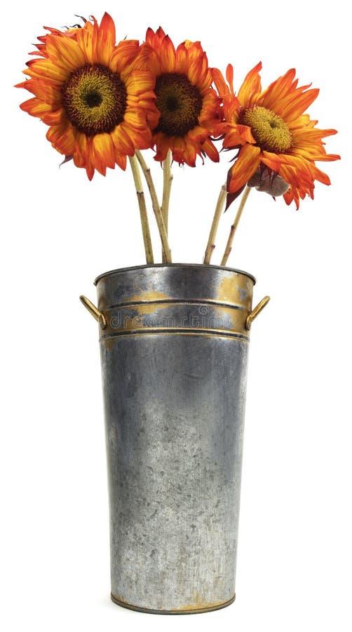 Geïsoleerde Metaalvaas met Rode Oranje Zonnebloemen stock foto