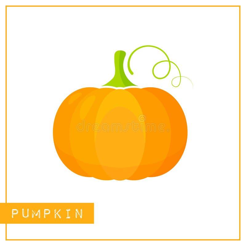 Geïsoleerde oranje pompoengeheugen opleidingskaart stock illustratie