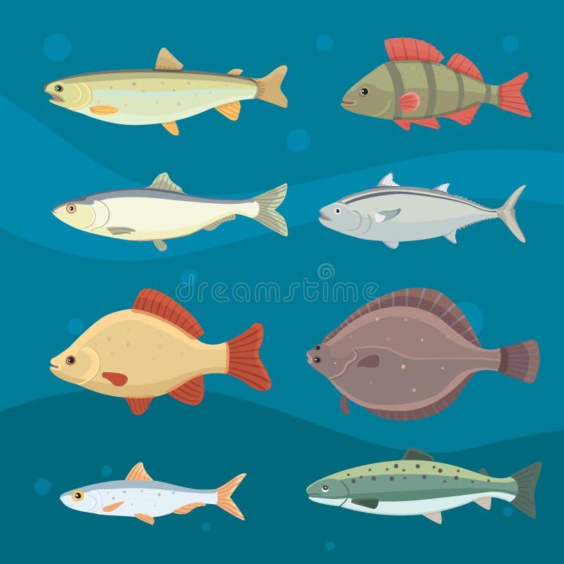 Geïsoleerde riviervissen Reeks zoetwater overzeese beeldverhaalvissen Fauna oceaan vectorillustratie stock illustratie