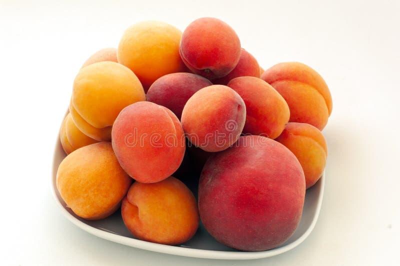 Geïsoleerde verse sappige perzikenvruchten en rijpe die abrikozen op witte plaat worden geïsoleerd Het concept van het de zomerfr royalty-vrije stock afbeeldingen