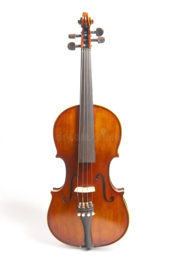 Geïsoleerde viool stock foto's