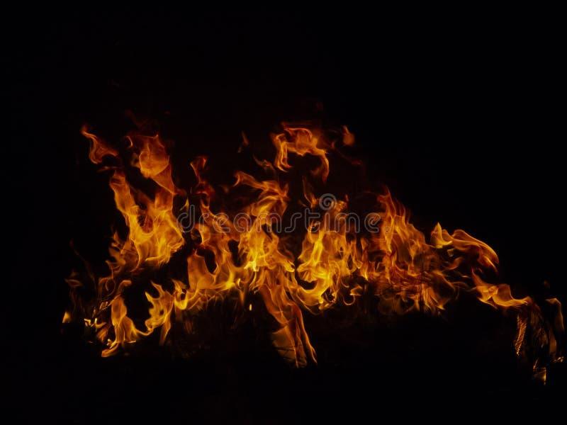 Geïsoleerde vlammen met het branden van grasbladen, details stock afbeelding