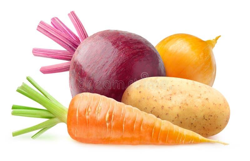 Geïsoleerde wortelgewassen stock afbeelding