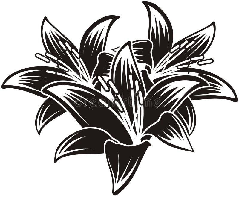 Geïsoleerdeb vector tropische bloemen royalty-vrije illustratie