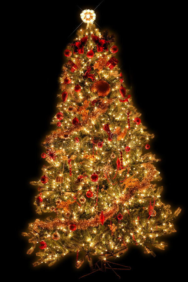 Geïsoleerdee Kerstmisboom royalty-vrije stock afbeelding