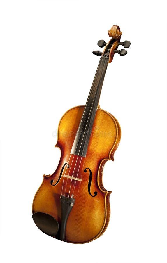 Geïsoleerdee viool, stock afbeelding