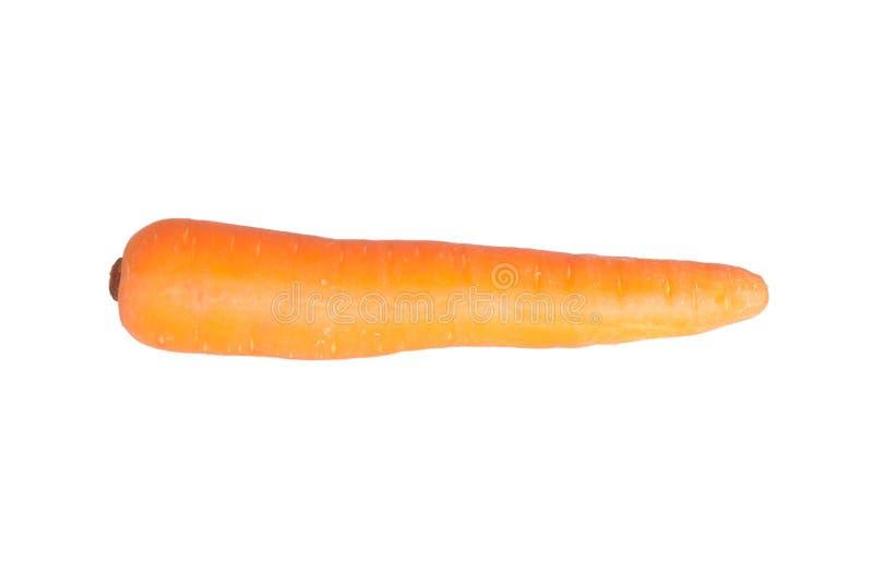 Geïsoleerdee wortel stock afbeelding