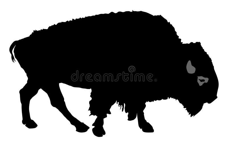 Geïsoleerdeg buffels Bison Walking royalty-vrije illustratie