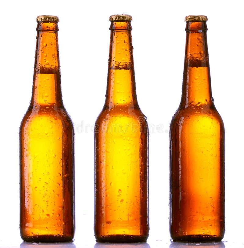 Geïsoleerdeg het bier van de fles royalty-vrije stock foto