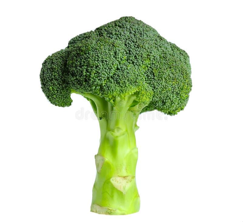 Geïsoleerdei broccoli royalty-vrije stock afbeelding