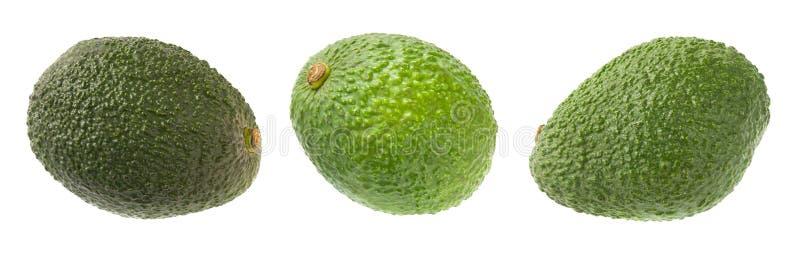 Geïsoleerdel de avocado's van Hass royalty-vrije stock foto
