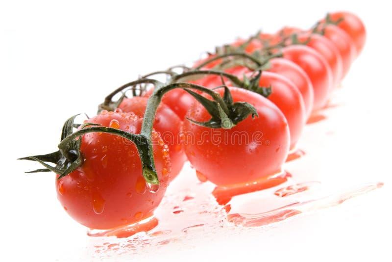 Geïsoleerdem de tomaat van de kers royalty-vrije stock afbeeldingen
