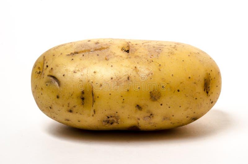 Geïsoleerden aardappel royalty-vrije stock afbeeldingen