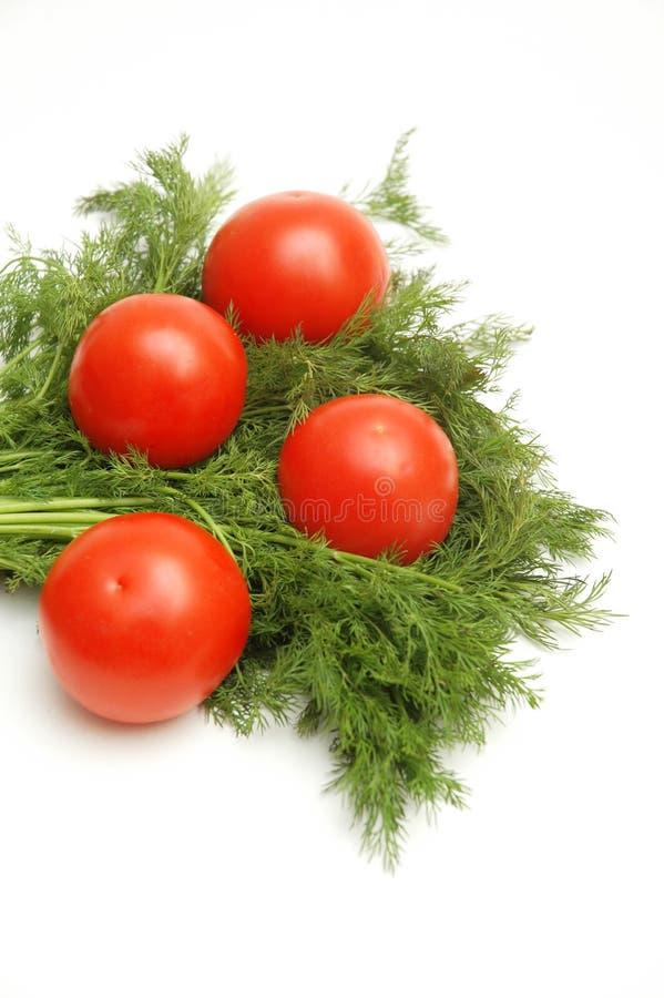geïsoleerdeo tomaten en kruiden royalty-vrije stock afbeeldingen