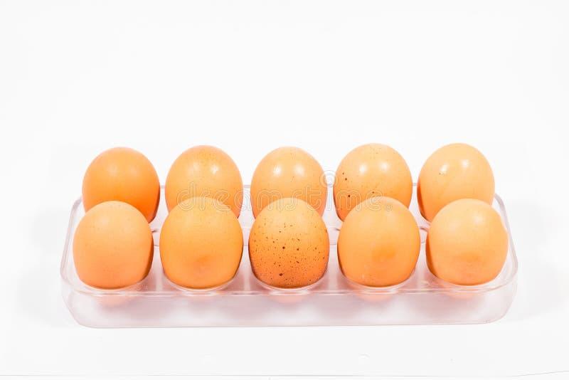 Geïsoleerder eieren stock afbeelding