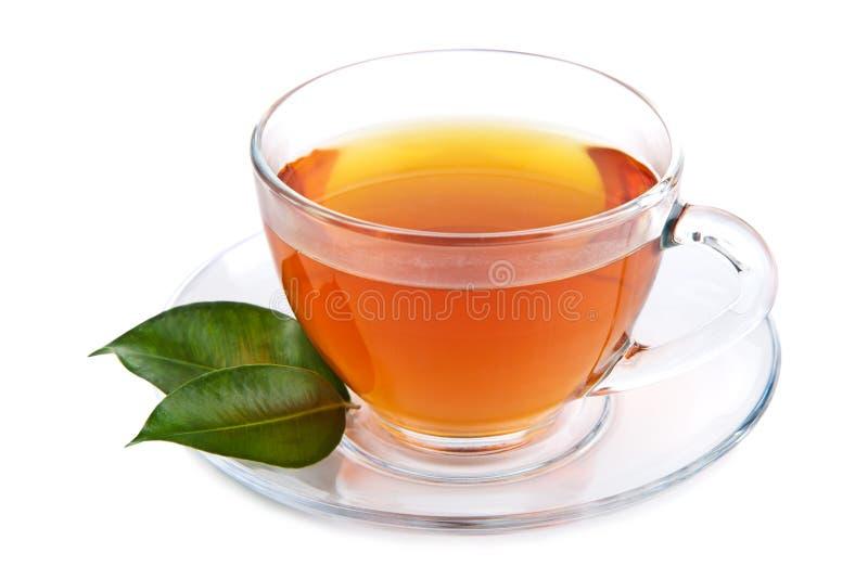 Geïsoleerdes kop thee stock fotografie