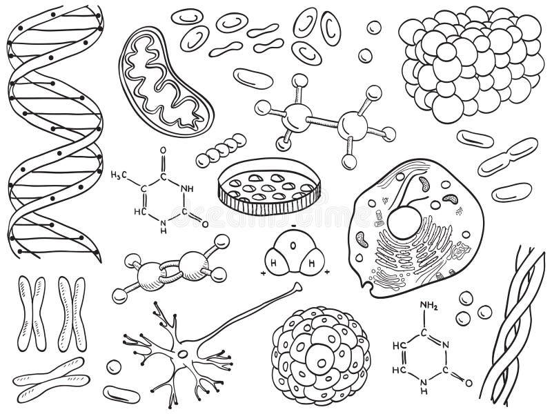Geïsoleerdet de pictogrammen van de biologie en van de chemie royalty-vrije illustratie