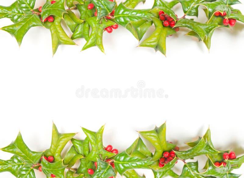 Geïsoleerdn de hulstframe van Kerstmis stock afbeeldingen