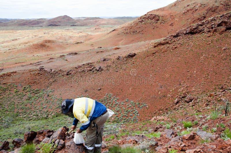 Geólogo Prospecting para o minério de ferro - Pilbara - Austrália fotografia de stock royalty free