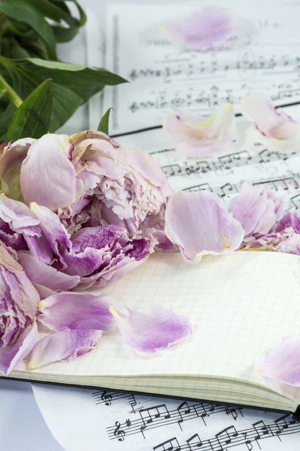 Geöffnetes Notizbuch mit einigen Rosa verwelkten Pfingstrosen stockfotos