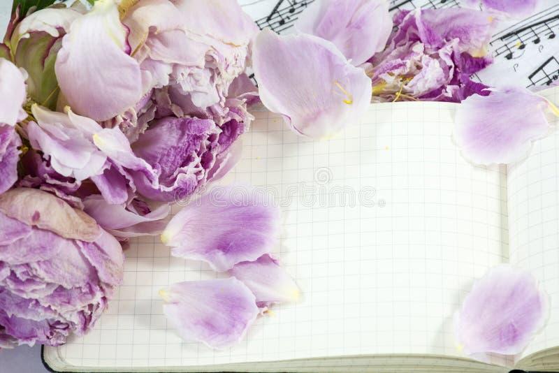 Geöffnetes Notizbuch mit einigen verwelkten Pfingstrosen lizenzfreie stockfotos