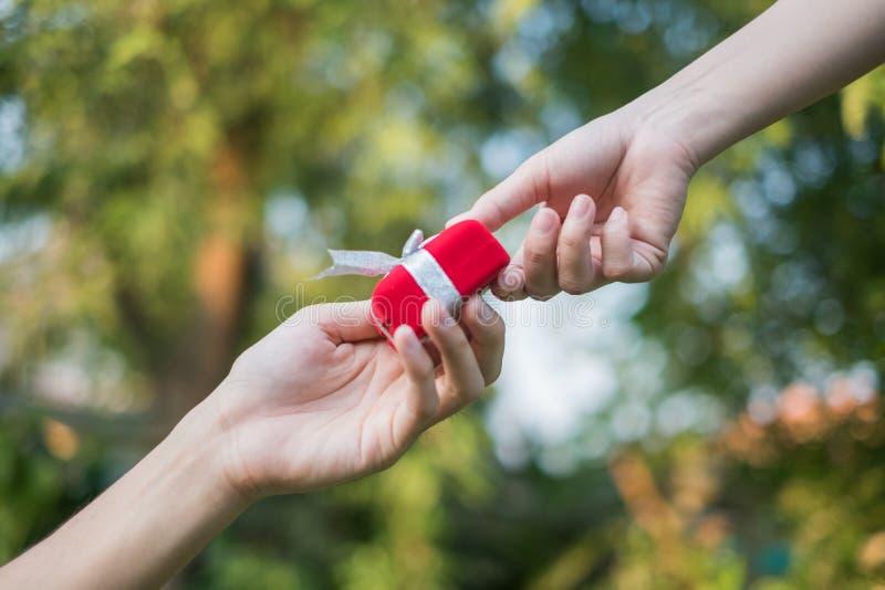 Ge den röda gåvaasken in med händer på speciala dagar för special person, på gräsbakgrund Vigselringask royaltyfri fotografi