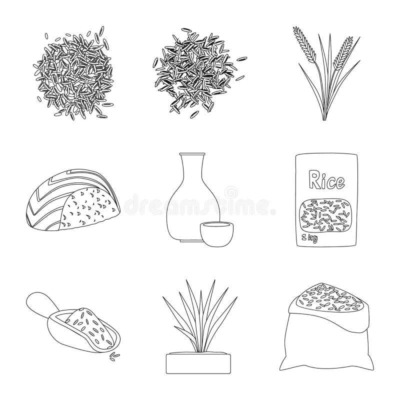 Ge?soleerd voorwerp van dieet en kokend pictogram Reeks van dieet en organisch vectorpictogram voor voorraad stock illustratie