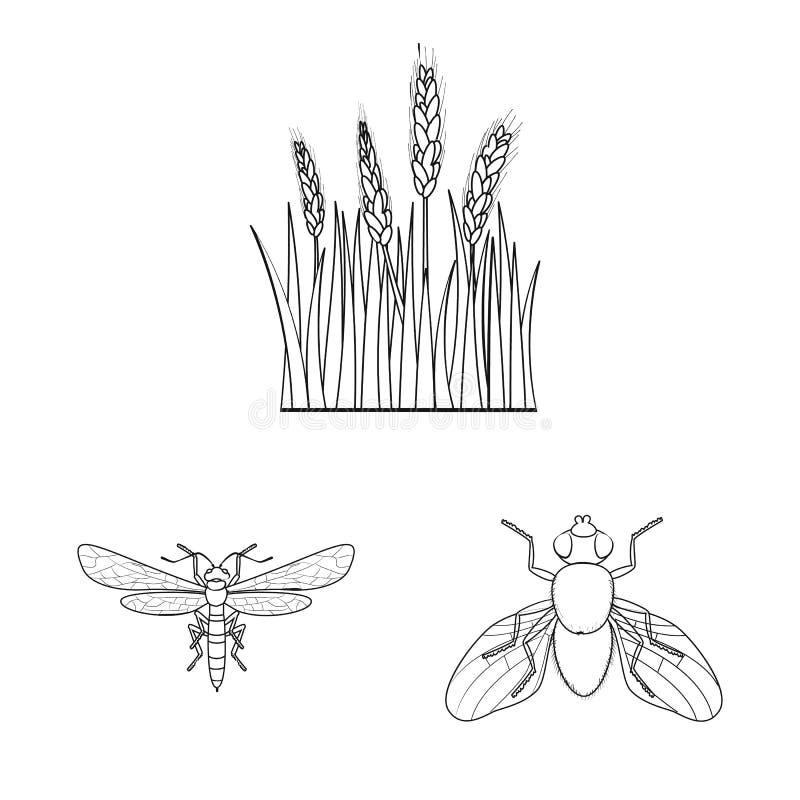 Ge?soleerd voorwerp van landbouw en de landbouwpictogram Inzameling van landbouw en het symbool van de installatievoorraad voor W stock illustratie