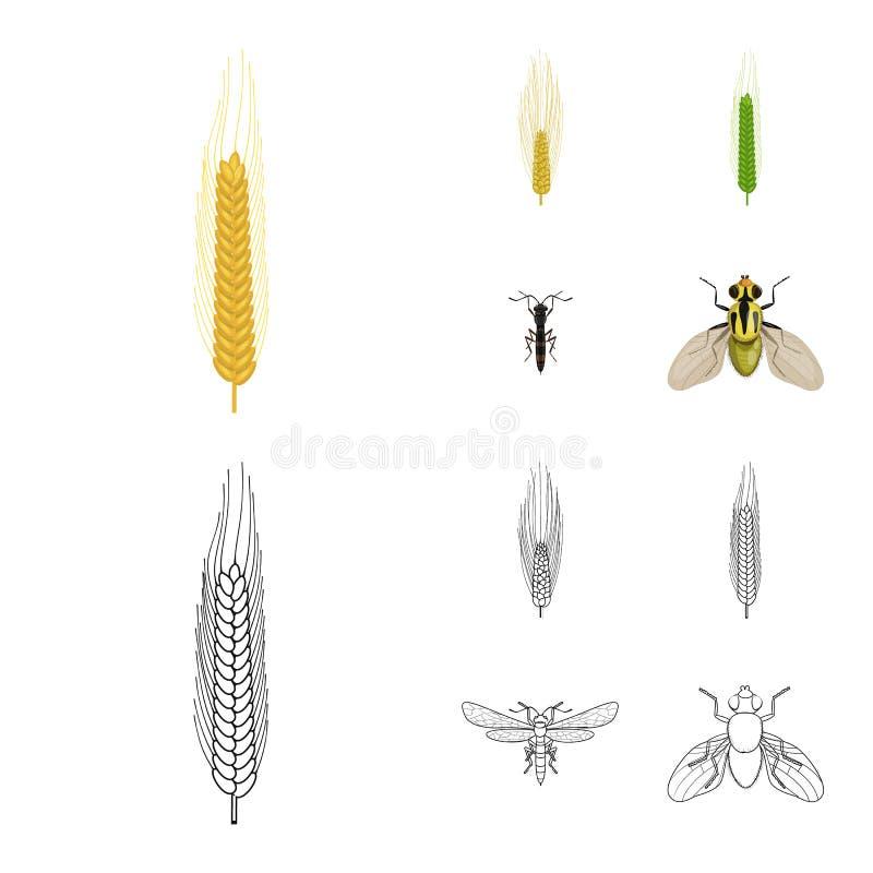 Ge?soleerd voorwerp van landbouw en de landbouwpictogram Inzameling van landbouw en de vectorillustratie van de installatievoorra vector illustratie