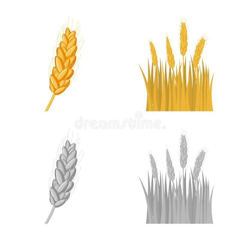 Ge?soleerd voorwerp van landbouw en de landbouwsymbool Inzameling van landbouw en de vectorillustratie van de installatievoorraad stock illustratie