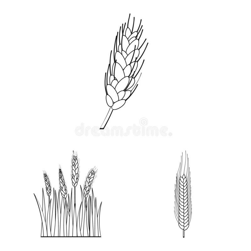 Ge?soleerd voorwerp van landbouw en de landbouwsymbool Reeks van landbouw en installatie vectorpictogram voor voorraad stock illustratie